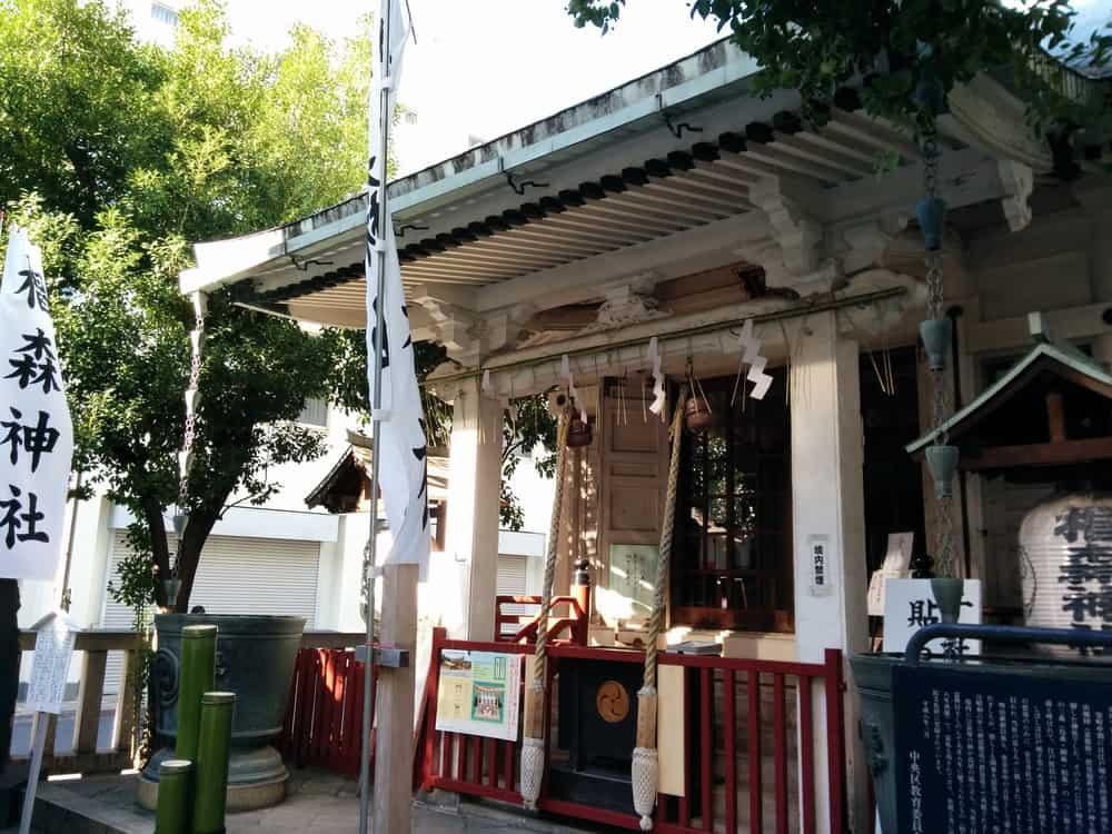 椙森神社 (3)